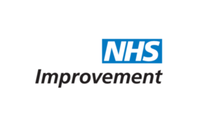 Non-executive Directors, Dudley Integrated Care Provider (ICP)